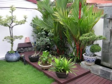 Small terrace garden design