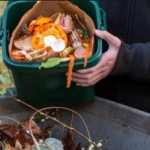A Small Tip on How to Stop Food Waste At Home