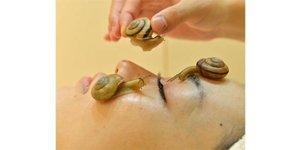 Snail-massage