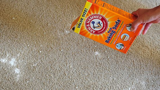 ... cleaning vomit with baking soda clean your carpet ...
