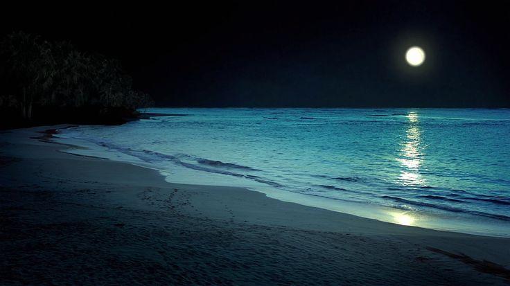 Go swimming at night 14