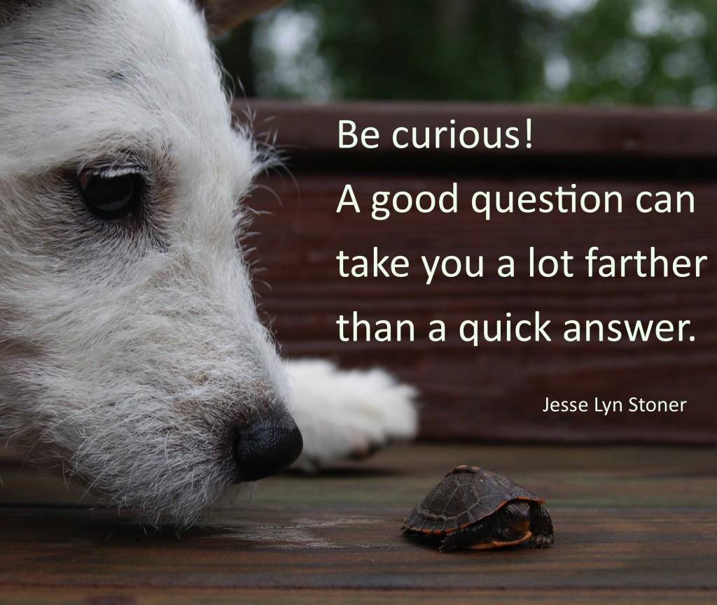9-be-curious