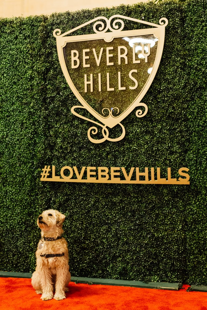 A Style for Every Stay NY Pop-Up_Credit - Beverly Hills Conference & Visitors Bureau